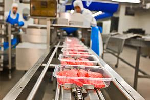 Food industry Application comet